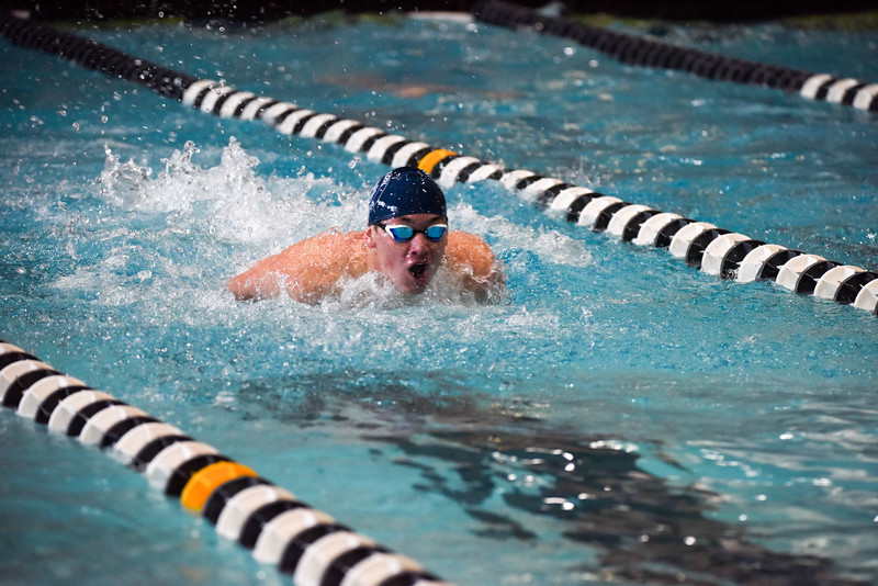 Blues Swimming Sets Records; Prepares for State Meet