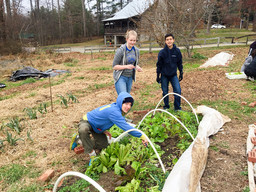 Third Form Gardening Crew Grows Produce for Local Food Banks