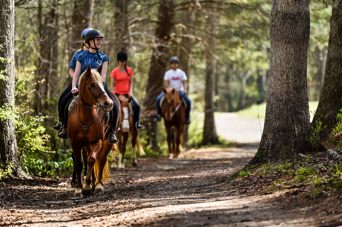Asheville School Equestrian Teaches Students Valuable Skills